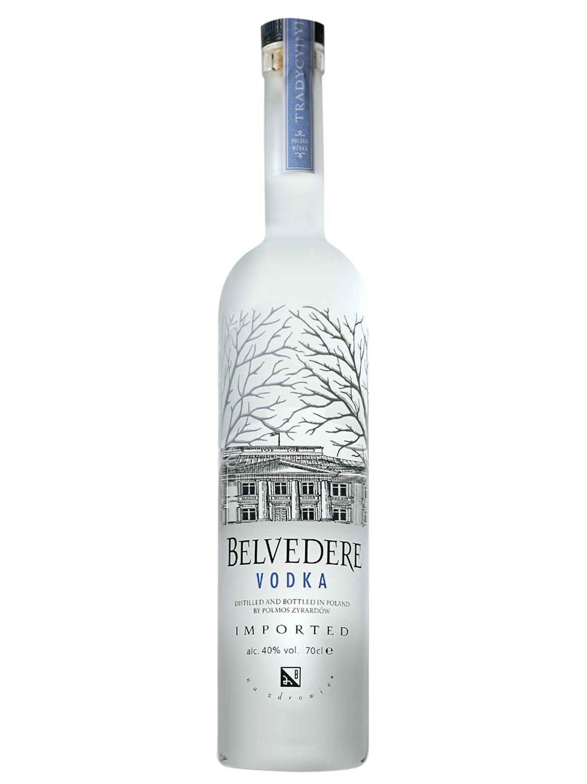 Top 10 Vodka Brands That Will Get the Party Started
