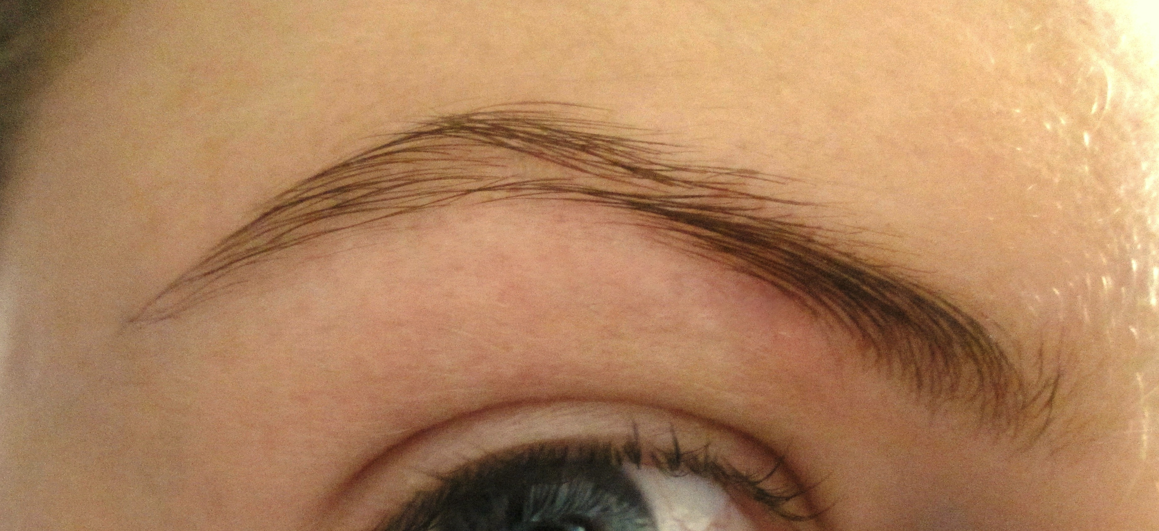 My Rapidlash Review The Results Are In And Speak For Themselves