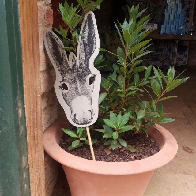 The Babylonstoren donkey waves good bye!